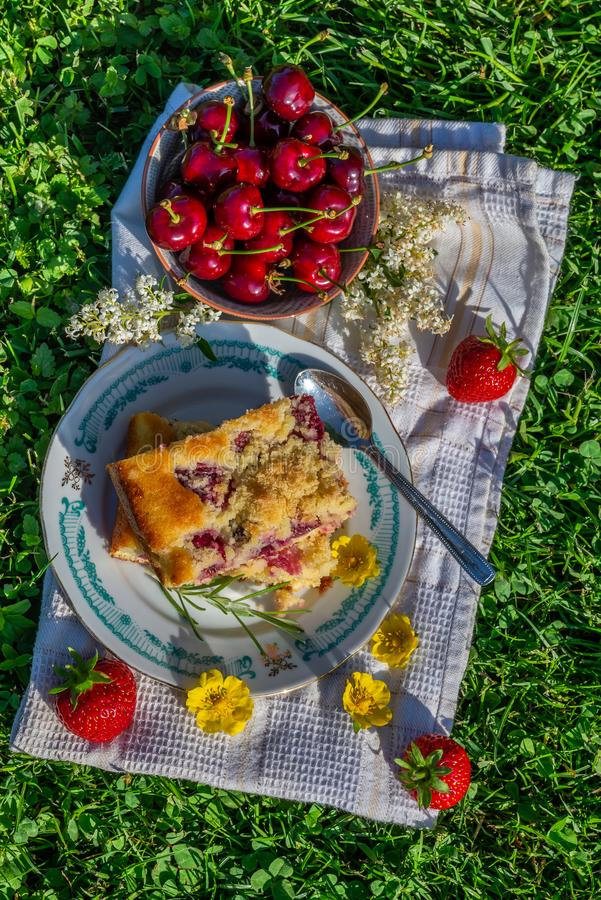 Top view on portion of cherry cake with ripe strawberries around and yellow blooms royalty free stock images