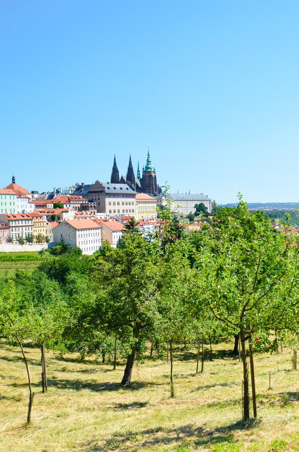 Vertical photography of Czech capital Prague shot from Petrin hill with green park. Prague Castle and St. Vitus Cathedral are stock photos