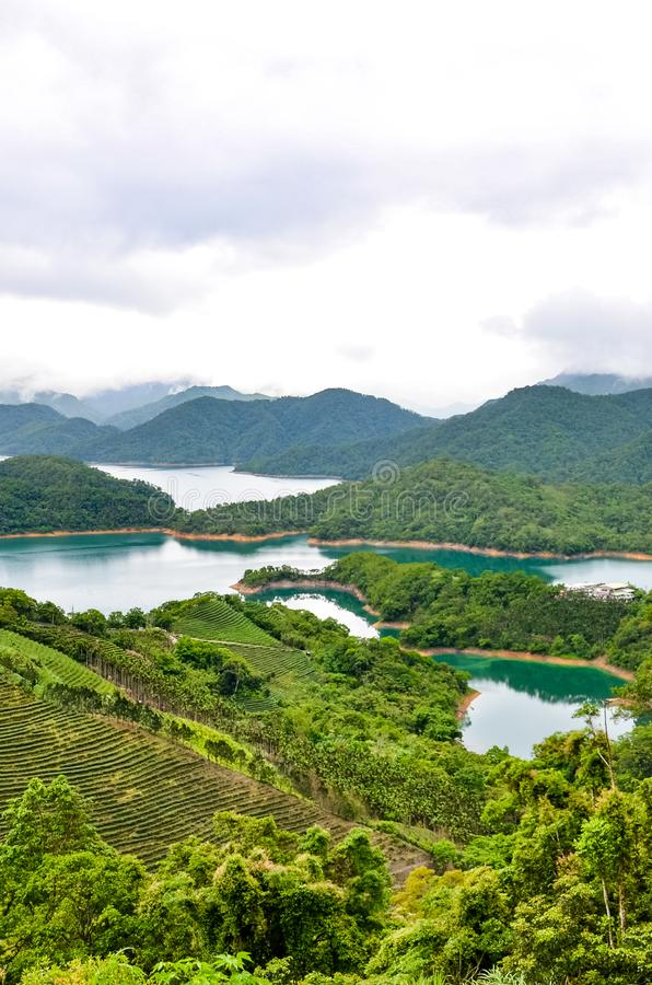 Vertical picture of stunning Taiwanese landscape by Thousand Island Lake and Pinglin Tea Plantations photographed in moody weather. Taiwan countryside. Oolong royalty free stock images