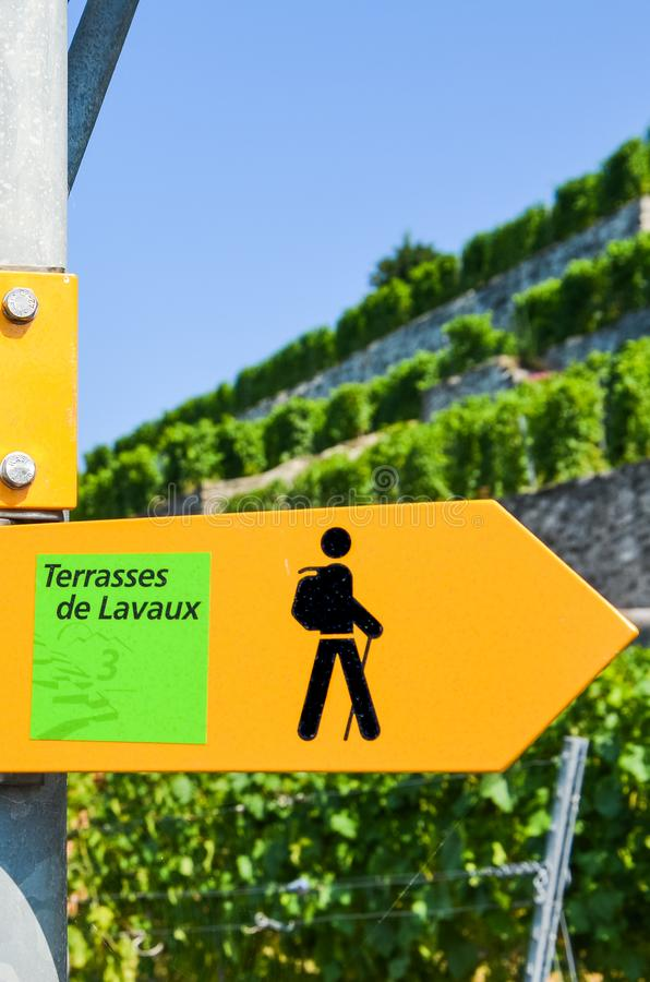 Vertical picture of yellow tourist sign in French saying Terraces of Lavaux giving directions in famous Lavaux wine region, Vaud,. Switzerland. Blurred terraced stock photos