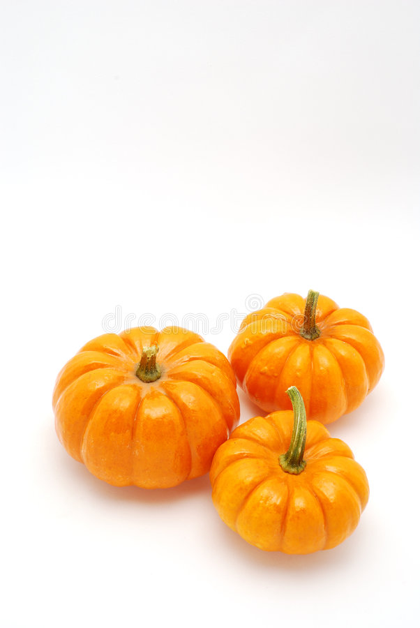 Free Vertical Pumpkins Over White Royalty Free Stock Photography - 3161187