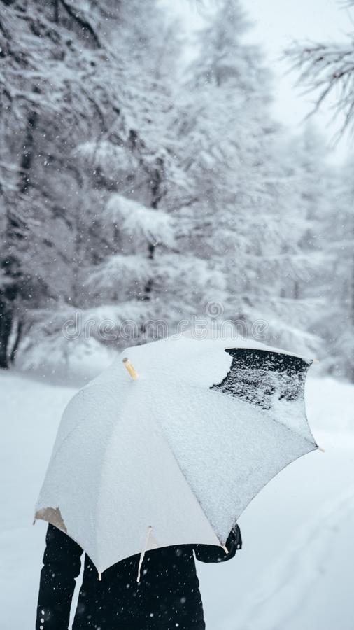 Vertical selective closeup shot of a person holding an umbrella near trees covered in snow royalty free stock photography