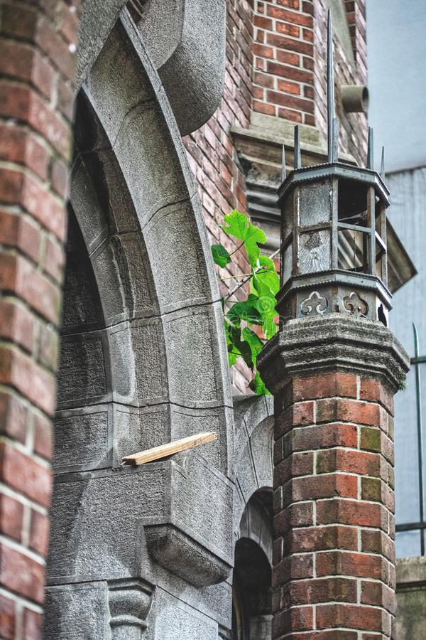 Vertical shot of beautiful architecture in an urban city with little greenery on the wall. A vertical shot of beautiful architecture in an urban city with little stock photo