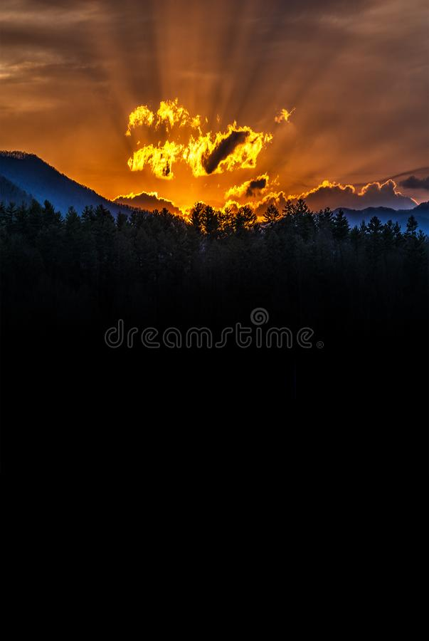 Vertical Smoky Mountain Sunrise With Copy Space. Vertical shot of a beautiful Smoky Mountain sunrise with copy space royalty free stock images