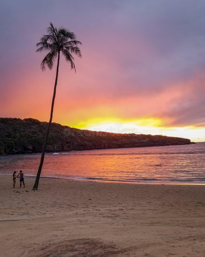 Tropical Ocean Beach At Sunset. Stock Image