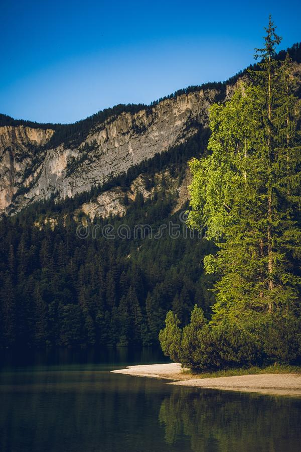 Vertical shot of a calm body of water near a grey mountain base with pine tree forest. A vertical shot of a calm body of water near a grey mountain base with stock image
