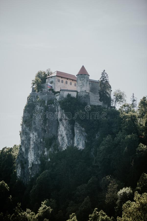 Vertical shot of a castle on top of the cliff near trees with a clear sky in the background. A vertical shot of a castle on top of the cliff near trees with a royalty free stock photo
