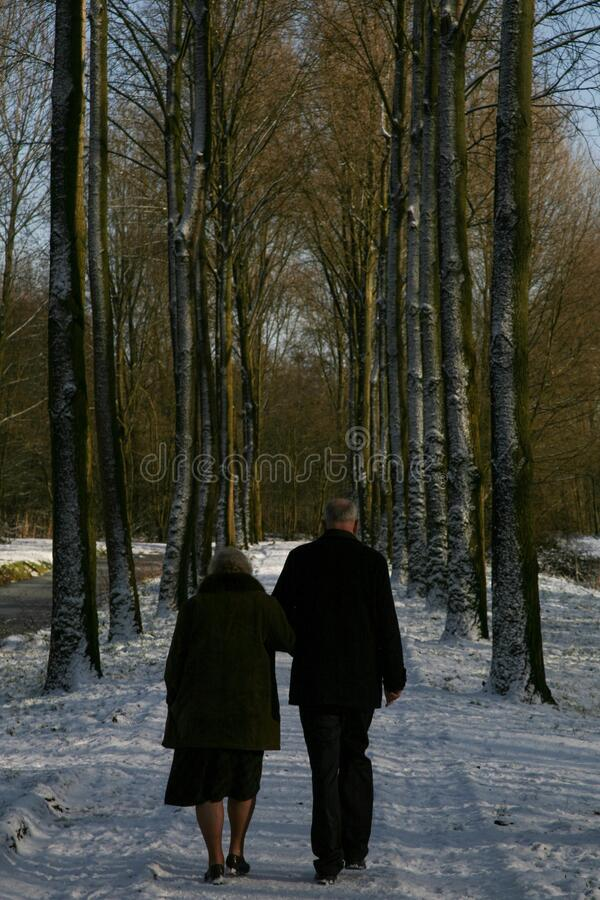 Vertical shot of a couple on a snow-covered walking road  in winter surrounded by tall trees stock photos