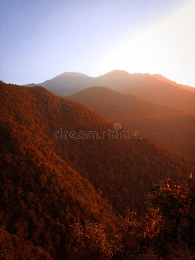 Vertical shot of forested mountains with brown leafed trees under a clear sky. A vertical shot of forested mountains with brown leafed trees under a clear sky royalty free stock images