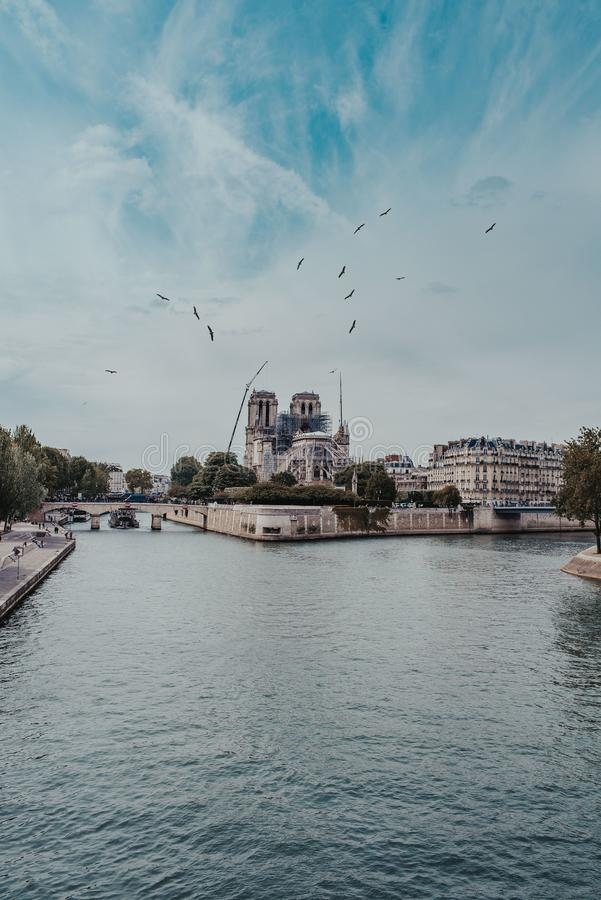 Vertical shot of high-rise buildings near a bridge over the river and birds flying under cloudy sky. A vertical shot of high-rise buildings near a bridge over royalty free stock images