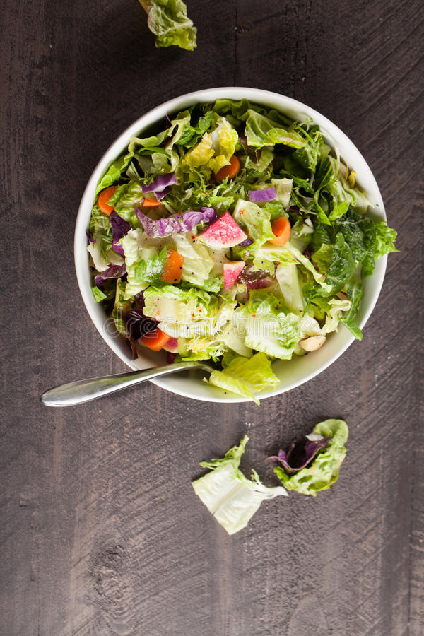 Vertical shot of italian salad with freshly harvested organic vegetables. Italian salad with freshly harvested organic vegetables including endive, red cabbage stock images