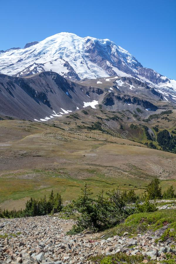 Looking across alpine meadows to Mount Rainier from Fremont Trail. Vertical shot looking down a rocky hillside to green alpine meadows and glacier-topped Mount stock image