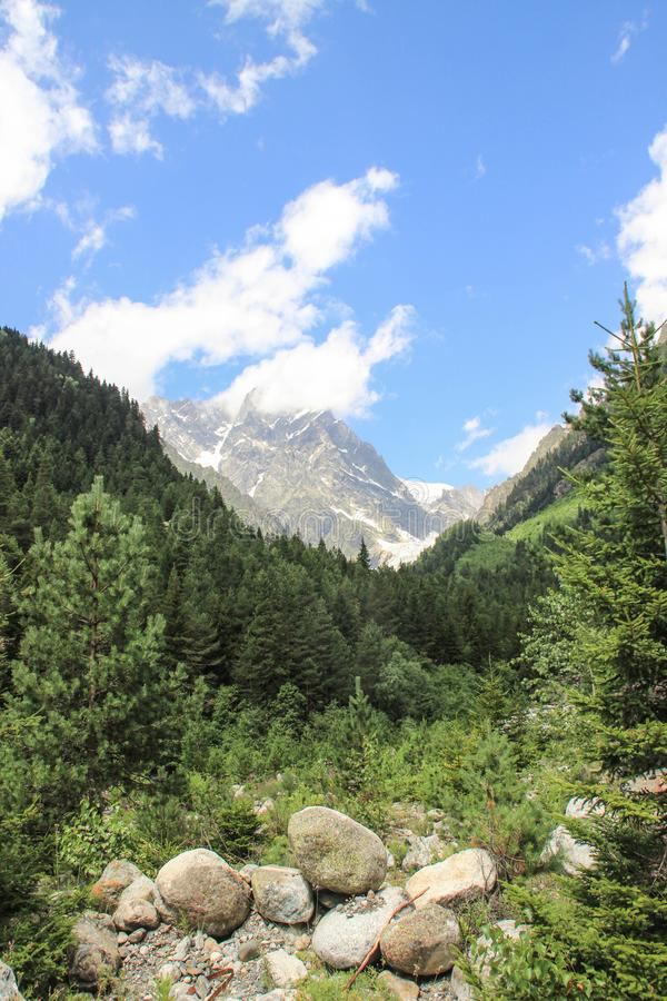 Vertical shot of Mount Ushba in Svaneti. Georgia. Snowy top of the mountain surrounded by forest. And stones royalty free stock photography