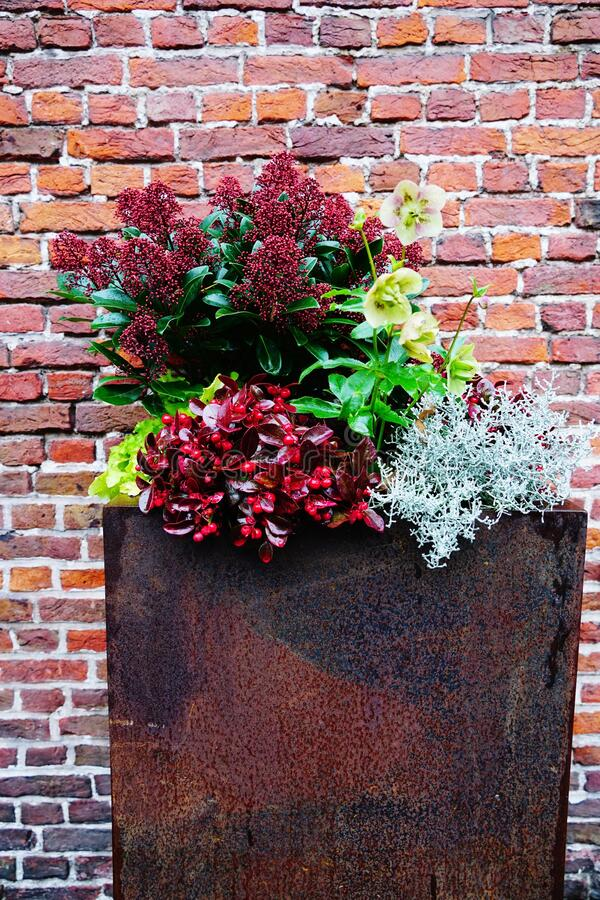 Free Vertical Shot Of A Beautiful Flower Composition In A Rusty Flower Pot Against A Brick Wall Stock Photo - 170654760