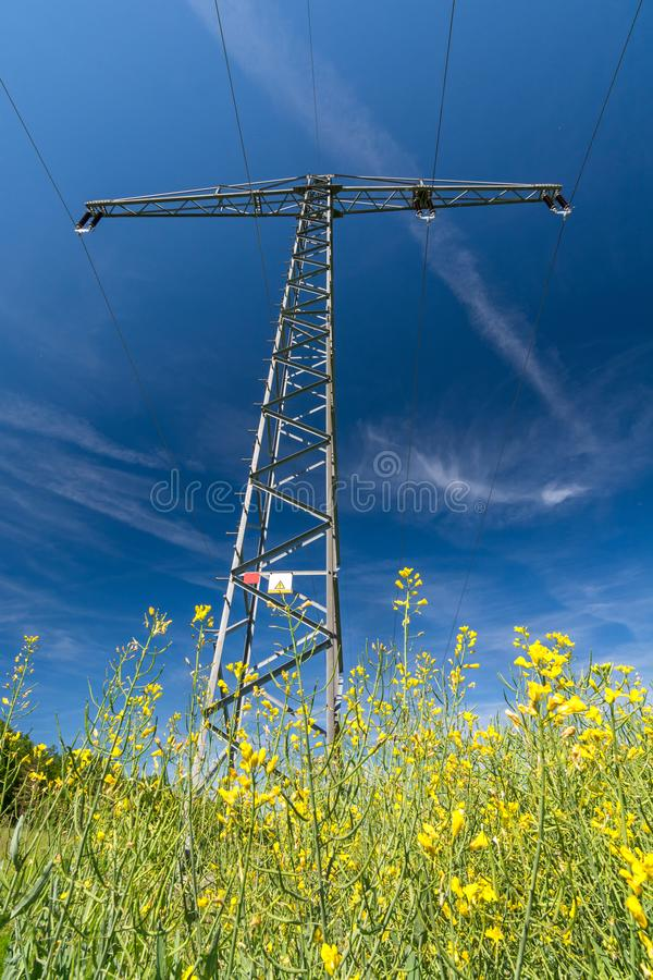 Vertical shot of a power pole in a rape field as a symbol for green electricity and renewable energies. Vertical shot of a power pole in a blooming rape field as royalty free stock images