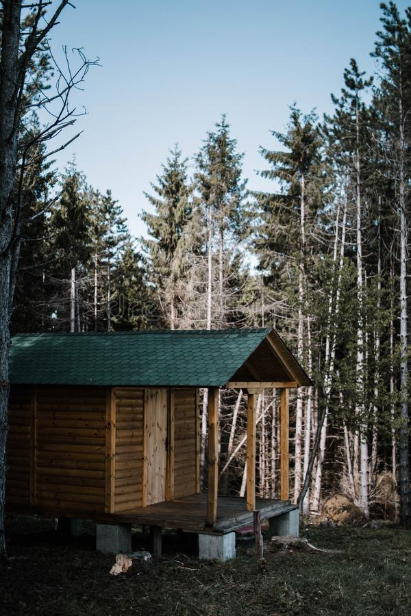 Vertical shot of a small wooden house surrounded by tall trees in a forest. A vertical shot of a small wooden house surrounded by tall trees in a forest stock photo