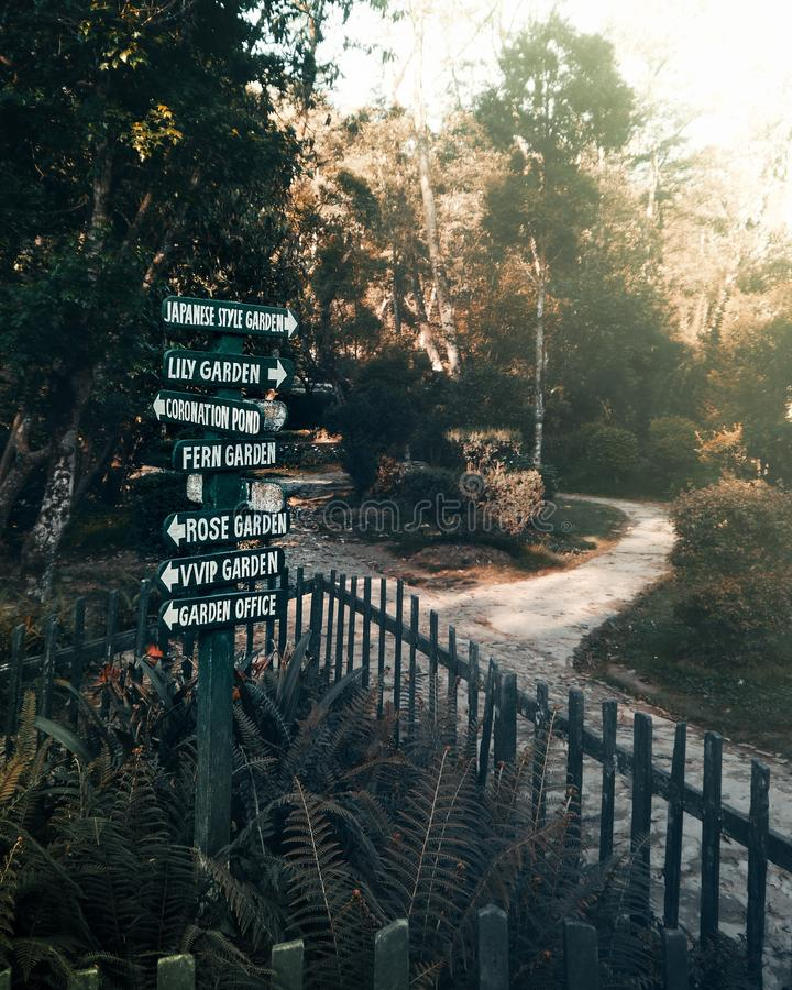 Vertical shot of wooden signs near pathways with trees in the background royalty free stock photos