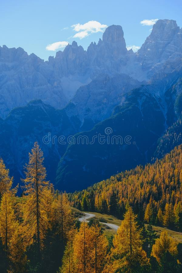 Vertical shot of yellow trees and mountains with blue sky in the background. A vertical shot of yellow trees and mountains with blue sky in the background royalty free stock photos