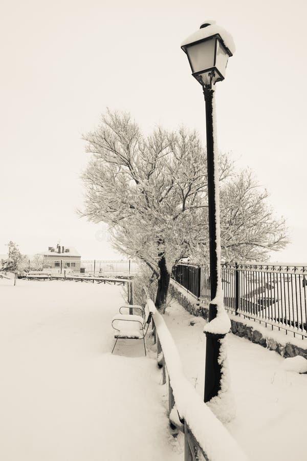 Vertical snow-covered garden stock photo