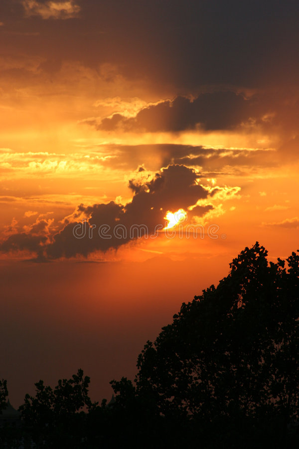 Vertical Sunset Royalty Free Stock Photo