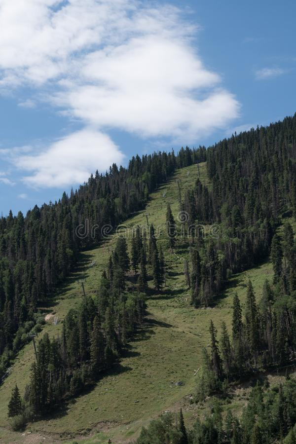 Vertical, Taos Ski Valley in New Mexico. The Taos Ski Valley mountains are scenic even in the summer with no snow stock photography