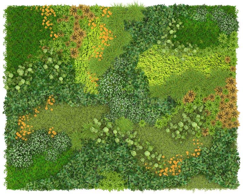 Vertical tekstura i Zielona ściana lub flowerbed odizolowywający na białym tle Odgórny widok 3d unaocznienie ilustracja wektor