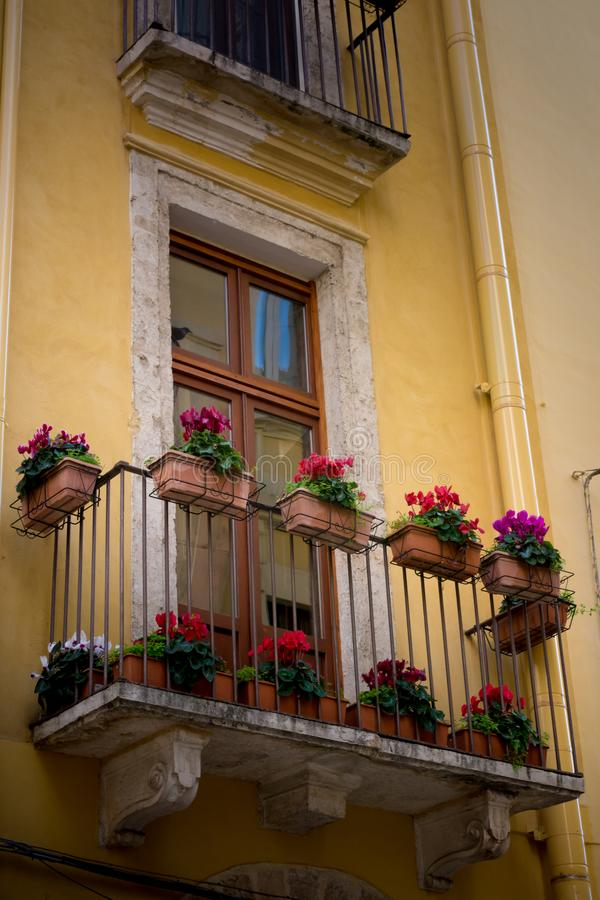 Vertical View of a Balcony Decorated With Fresh Flowers on the F royalty free stock photos