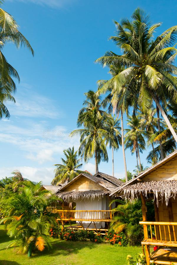 Vertical view of bamboo bungalows and palm trees stock image