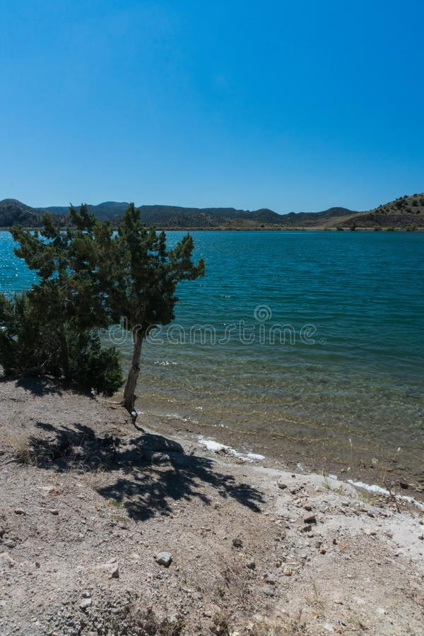Vertical view of Bill Evans Lake in New Mexico. stock photography