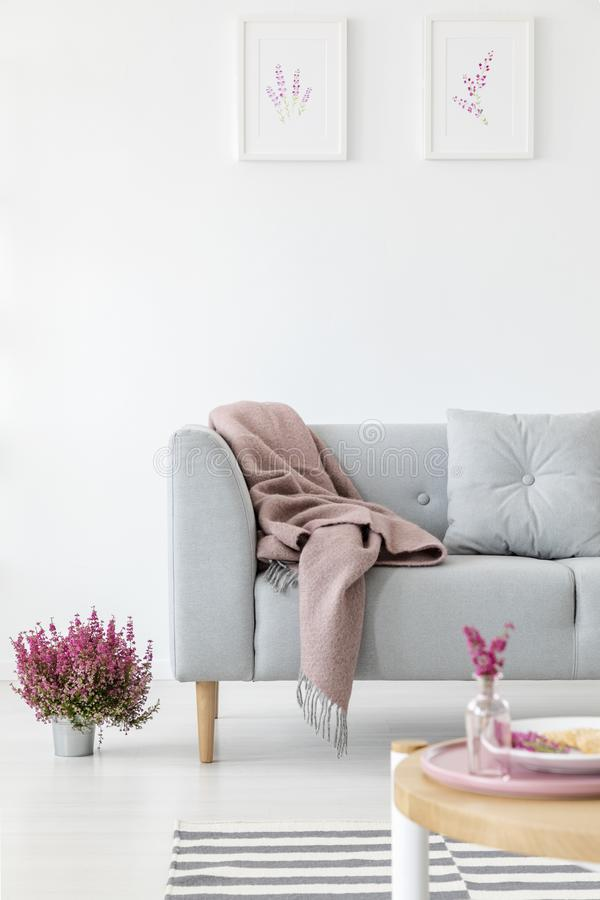 Vertical view of comfortable grey couch in bright living room interior with heather in pot and graphics i stock photo