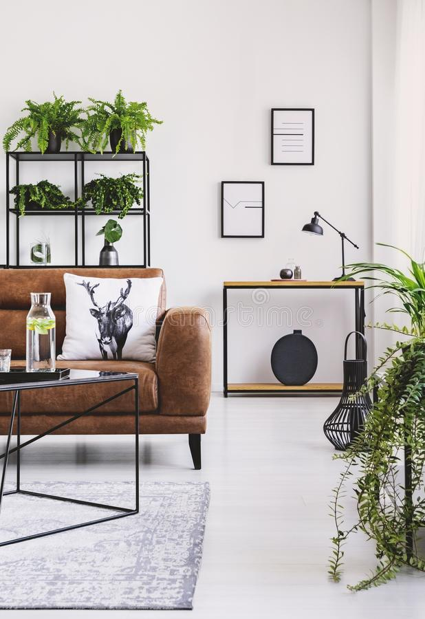 Vertical view of elegant living room with brown leather sofa with pillow, table with carafe and shelf full of plants. Vertical view of elegant living room with stock images