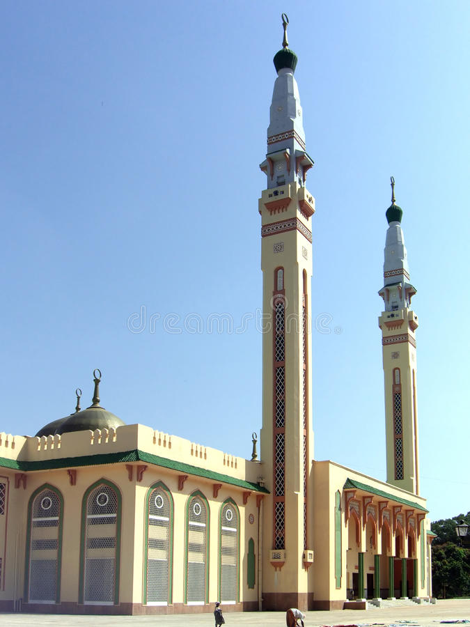 Free Vertical View Of The Grand Mosque In Conakry Royalty Free Stock Photo - 15791295