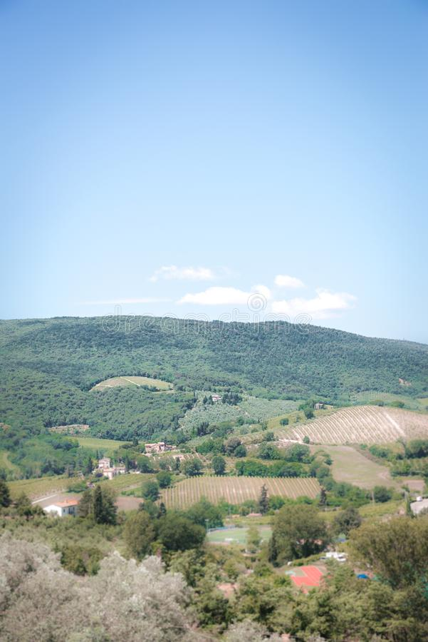 Vertical view into Tuscany country. Land is covered by trees, vineyards, olive alleys and few farm houses. Hill in background is stock photo
