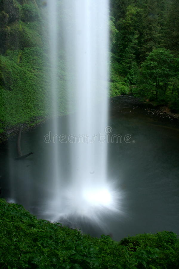 Download Vertical waterfall stock image. Image of forest, life - 10168155