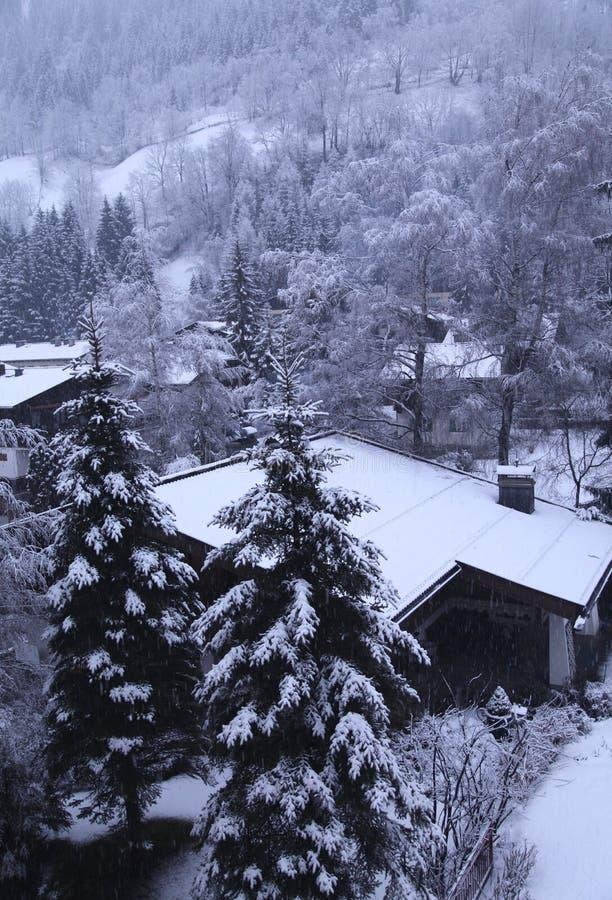 Vertical winter landscape in Tirol Alps, Austria stock photos