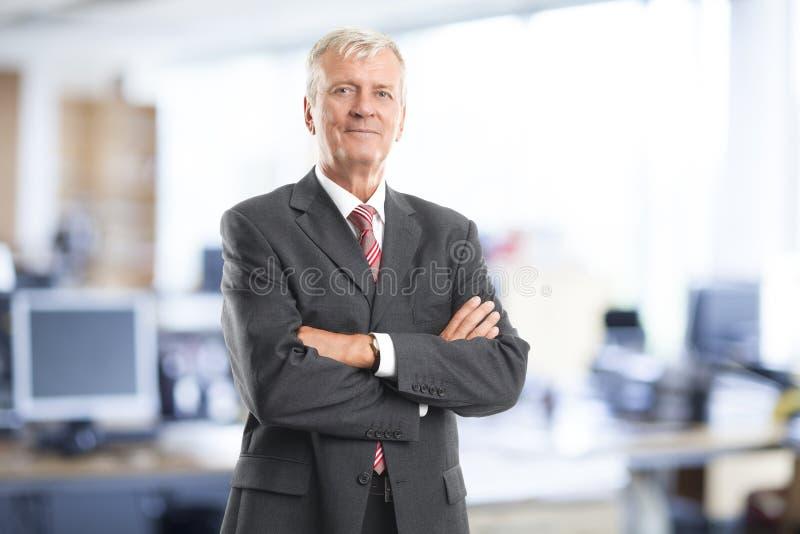 Verticale aînée d'homme d'affaires image libre de droits