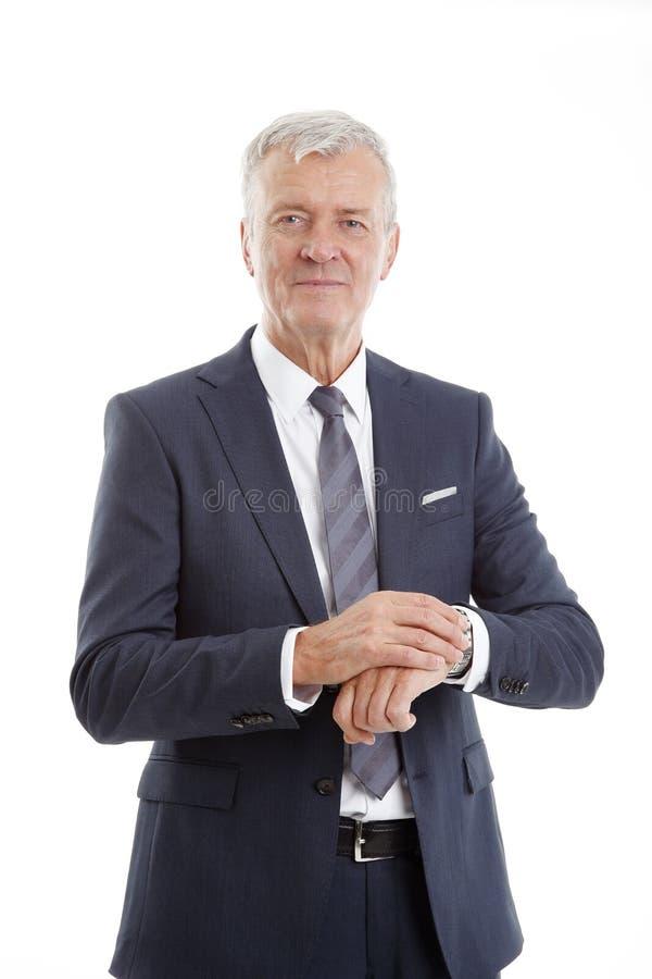 Verticale aînée d'homme d'affaires images stock