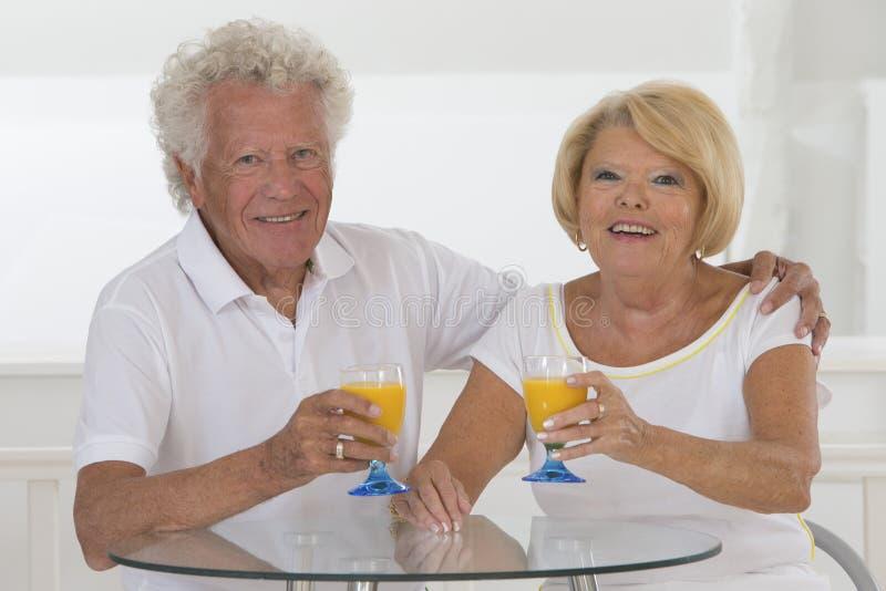 Verticale aînée de couples photographie stock libre de droits