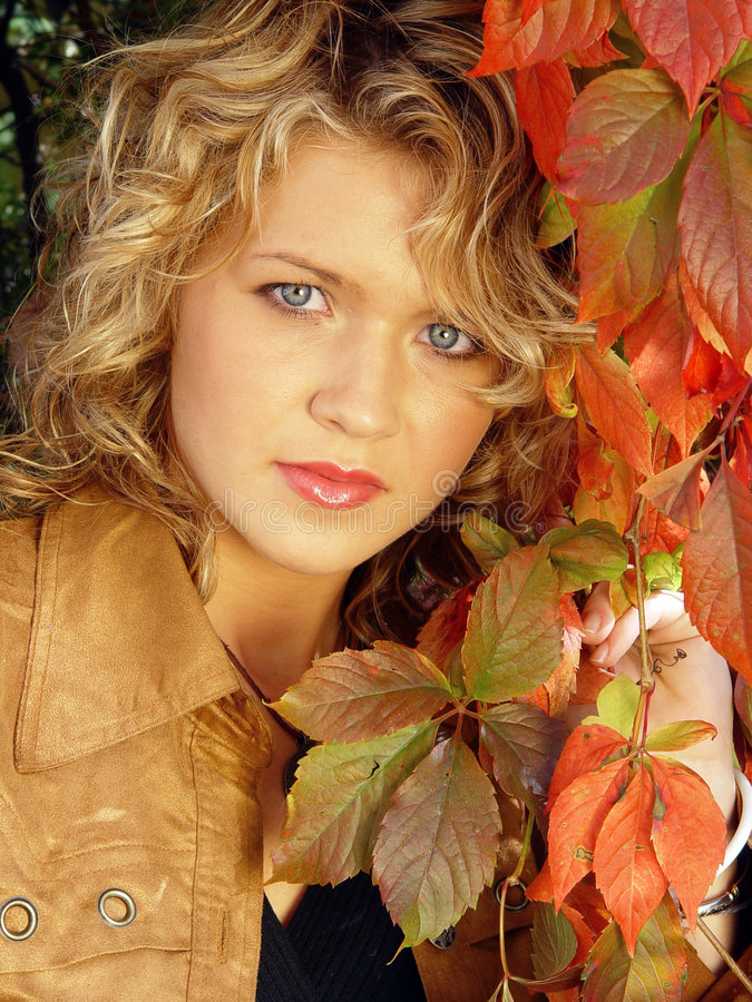 Verticale d'automne images stock