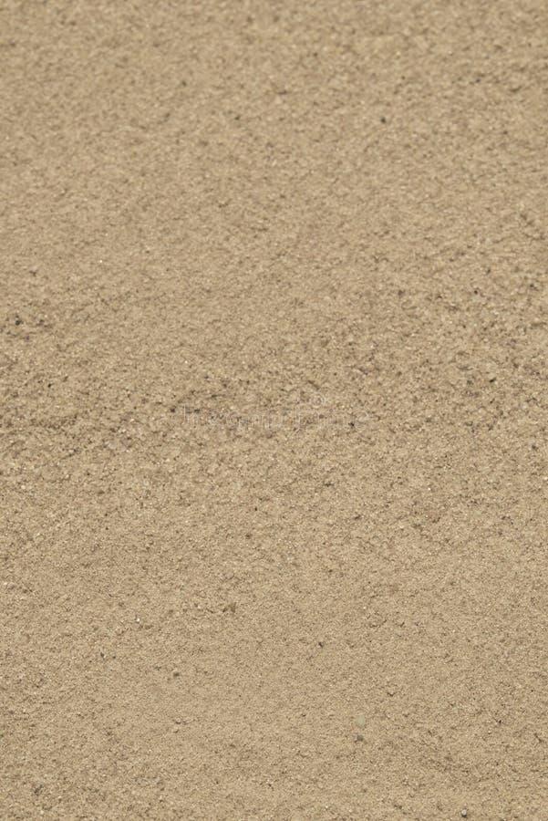 Verticale d'or de foyer sélectif de fond de sable photo libre de droits