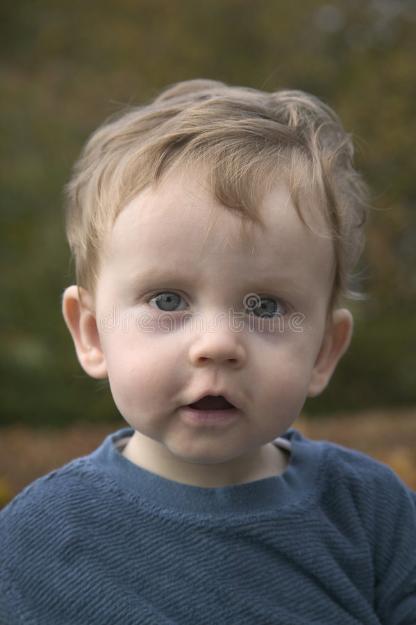 Verticale d'enfant en bas âge photos stock