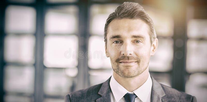 Verticale d'homme d'affaires bel confiant photos stock