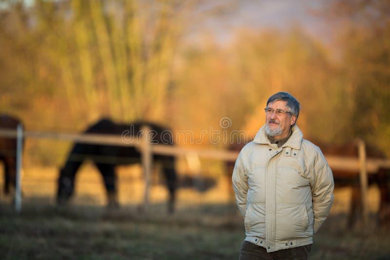 Verticale d'un homme aîné photo libre de droits