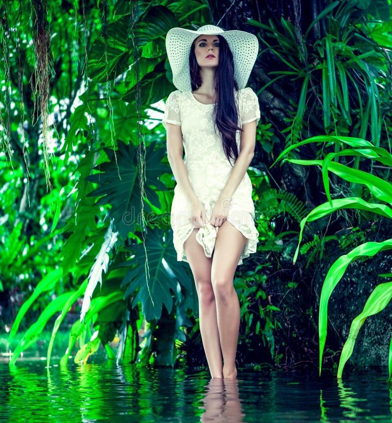 verticale d'une dame dans une forêt tropicale images libres de droits