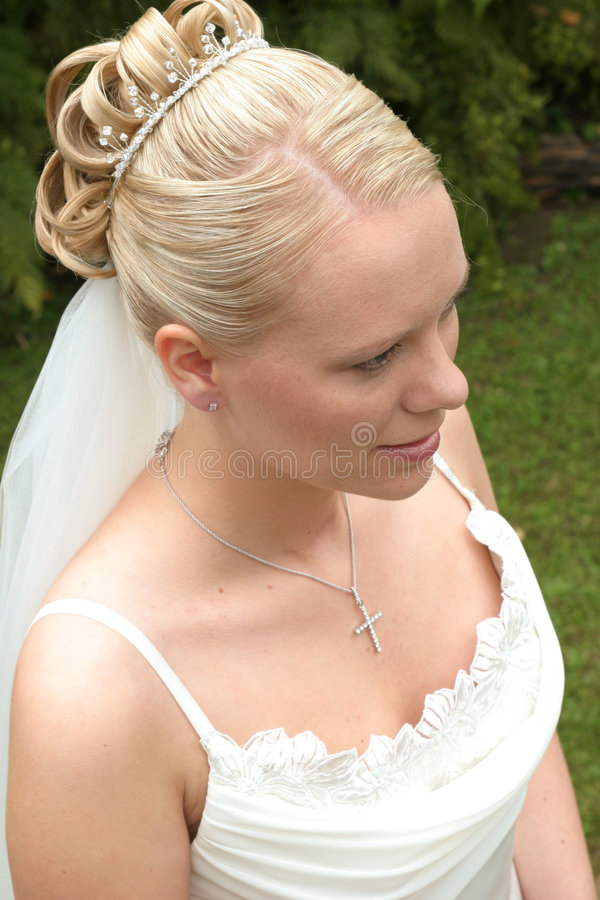 Verticale d'une mariée images libres de droits