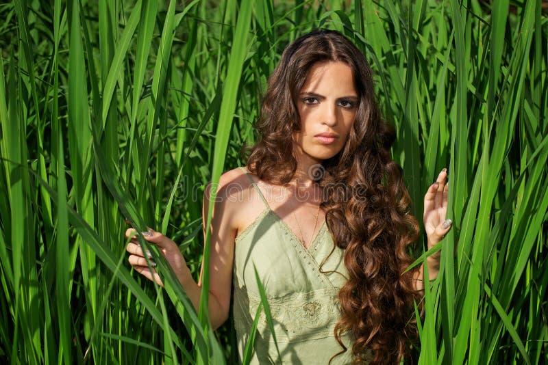 Verticale de belle femme avec le long cheveu bouclé image libre de droits