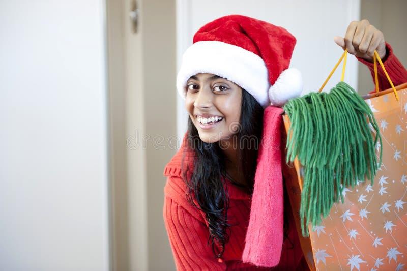 Verticale de belle fille de Noël photo stock