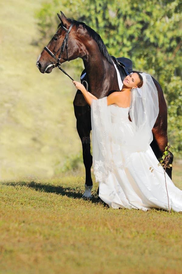 Verticale de belle jeune mariée avec le cheval image stock
