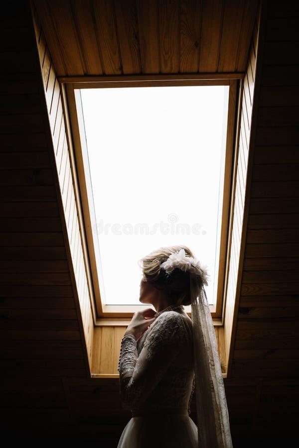 Verticale de belle mariée image libre de droits