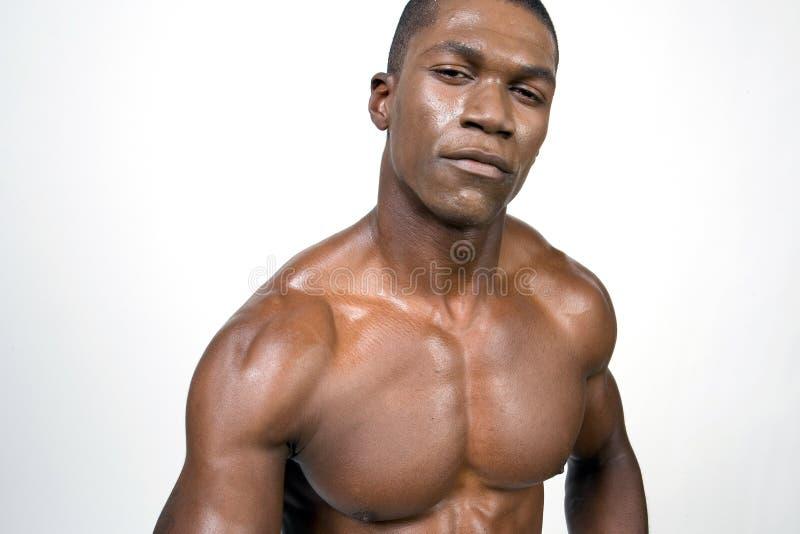 Verticale de bodybuilder noir photo stock